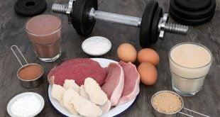 Mecanismos de absorção das proteínas