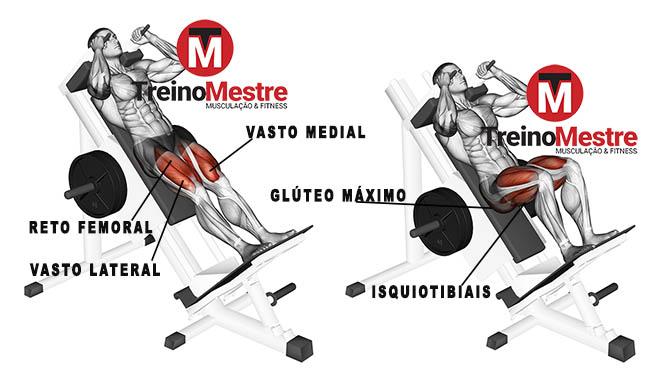 hack machine músculos trabalhados agachamento