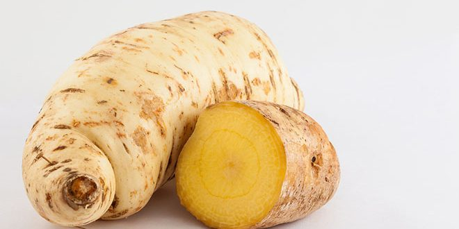 mandioquinha batata-baroa