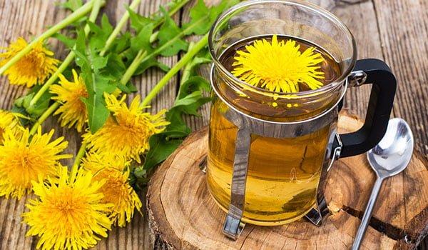 Chá de Folha de Dente-de-leão