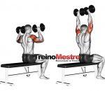 Treino para Ombros – 8 Exercícios para Ombros GIGANTES