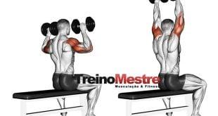treino para ombros exercícios