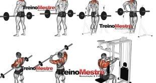 Exercícios para trapézio treino