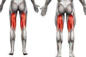 Fortalecimento de isquiotibiais e prevenção de lesões (5 Dicas mais vídeo)