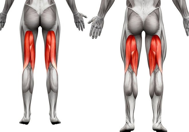 músculos isquiotibiais homem mulher evitar lesões