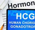 Dieta HCG – O que é, Como funciona, Benefícios, Emagrece?