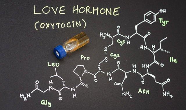 Ocitocina o que faz para que serve
