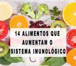 14 Alimentos que impulsionam o sistema imunológico