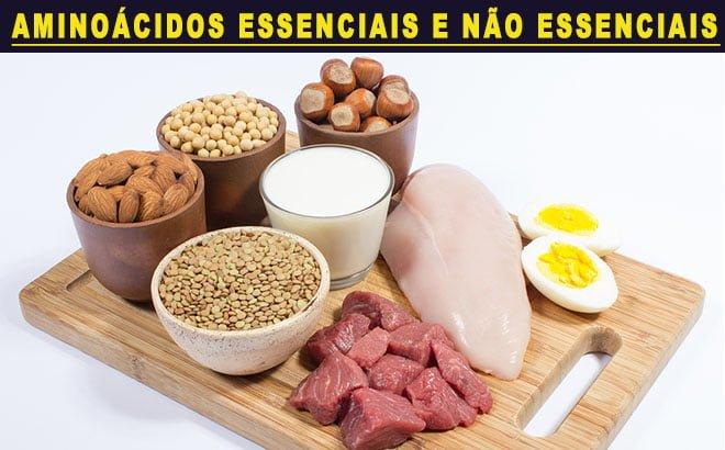 Aminoácidos essenciais não essenciais condicionados