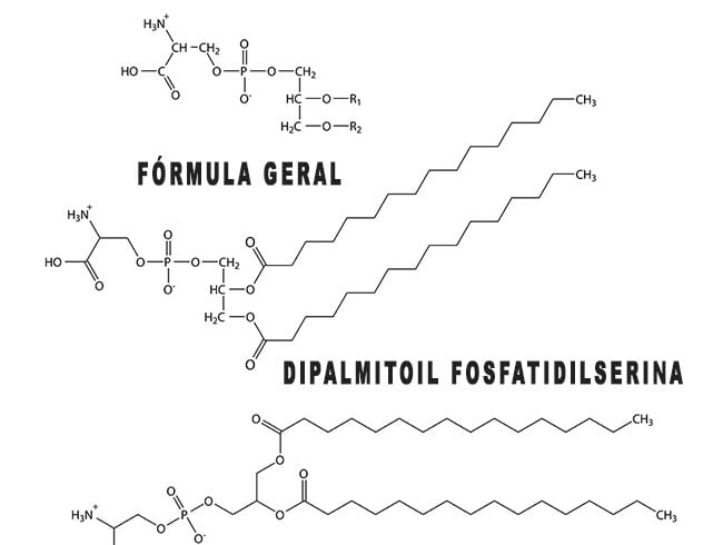 Fosfatidilserina fórmula