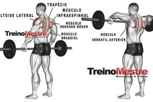 Remada Alta: Execução correta, músculos envolvidos e como potencializar