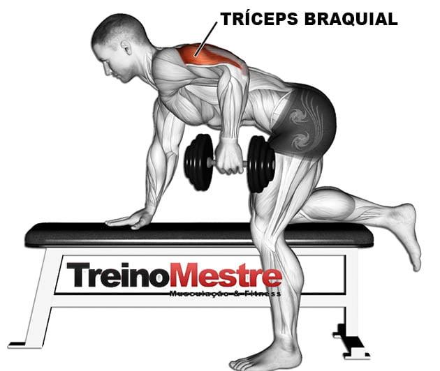tríceps coice músculos