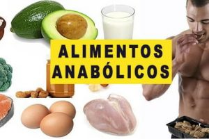 15 Alimentos anabólicos para incluir na dieta