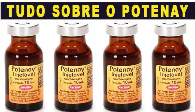 potenay