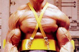 14 Dicas de Arnold Schwarzenegger Para Ganhar Massa Muscular