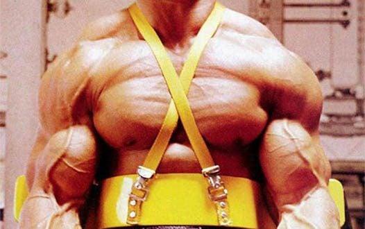 Dicas de Arnold Schwarzenegger Para Ganhar Massa Muscular