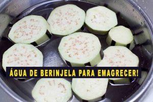 Água de Berinjela Emagrece! 14 Benefícios e Como Fazer