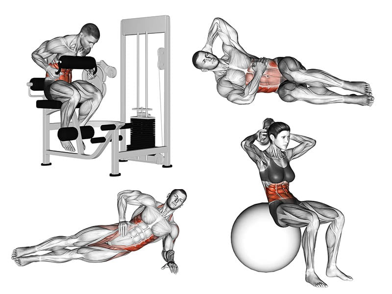 11 Melhores Exercícios Abdominais