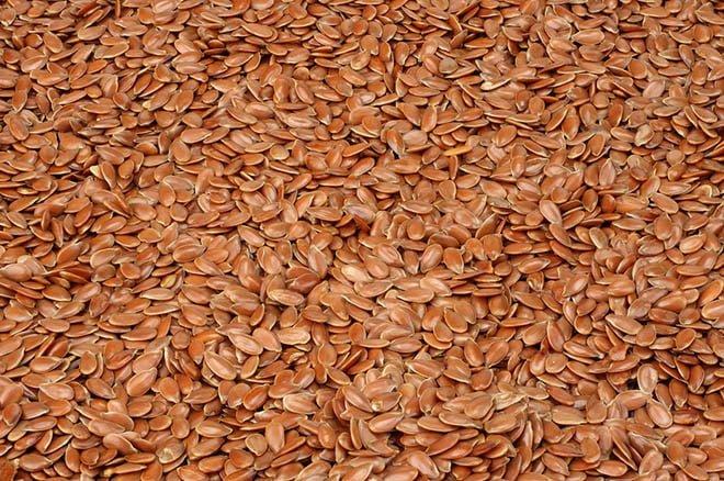linhaça semente