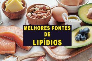 Lipídios: O que são, Tipos, Funções e Melhores Fontes