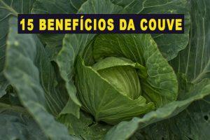 15 Benefícios da Couve, Propriedades e Como Fazer (receita fit)