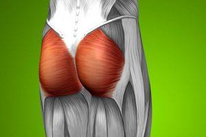 Por que alongar o glúteo é fundamental para a hipertrofia dele?