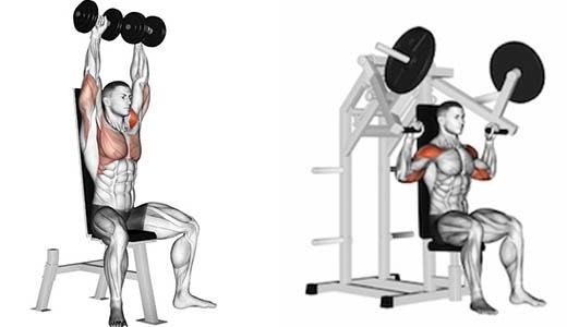 desenvolvimento ombros exercício maquina e halteres