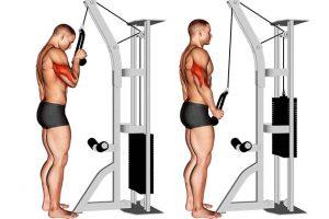 7 Formas de melhorar a execução dos movimentos na musculação