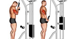 formas melhora execução movimentos musculação