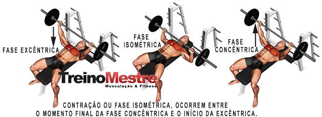 Fase excêntrica e Fase Concêntrica contração muscular
