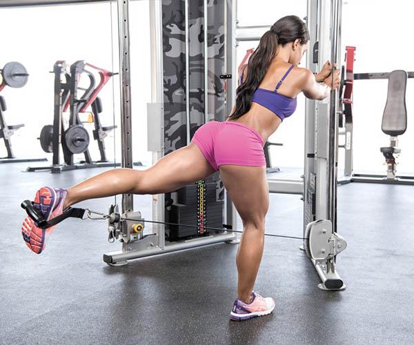 treino membros inferiores feminino