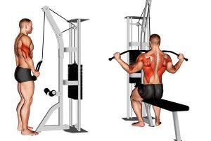 Protocolo de treino de hipertrofia para homens, como encontrar um que realmente dá resultado?