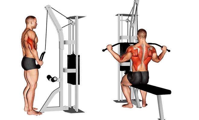 Protocolo de treino de hipertrofia para homens