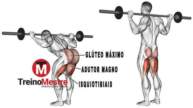 good morning exercício músculos