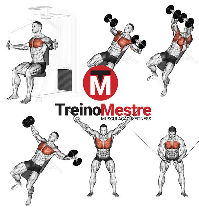 peitoral superior exercícios como desenvolver músculos