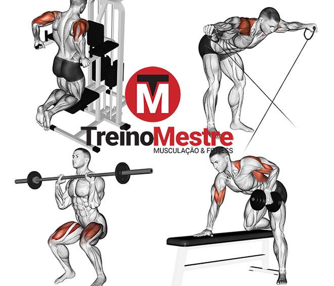 hipertrofia definição muscular emagrecimento diferenças