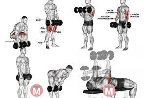 20 Exercícios Para Fazer em Casa [FICHA MONTADA]